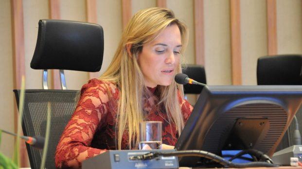 celina - Deputada distrital sugere que multas de trânsito sejam parceladas