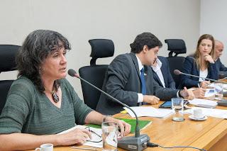 Jane Villas Boas - Marina Silva e a confusão na política ambiental de Rollemberg
