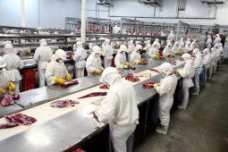Arábia Saudita habilita frigoríficos brasileiros