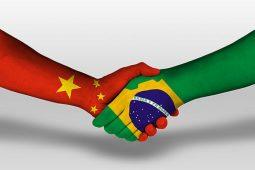 Chineses querem Brasil