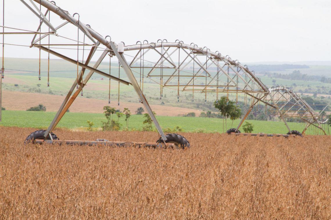 O recorde da agricultura (que não é vilã)