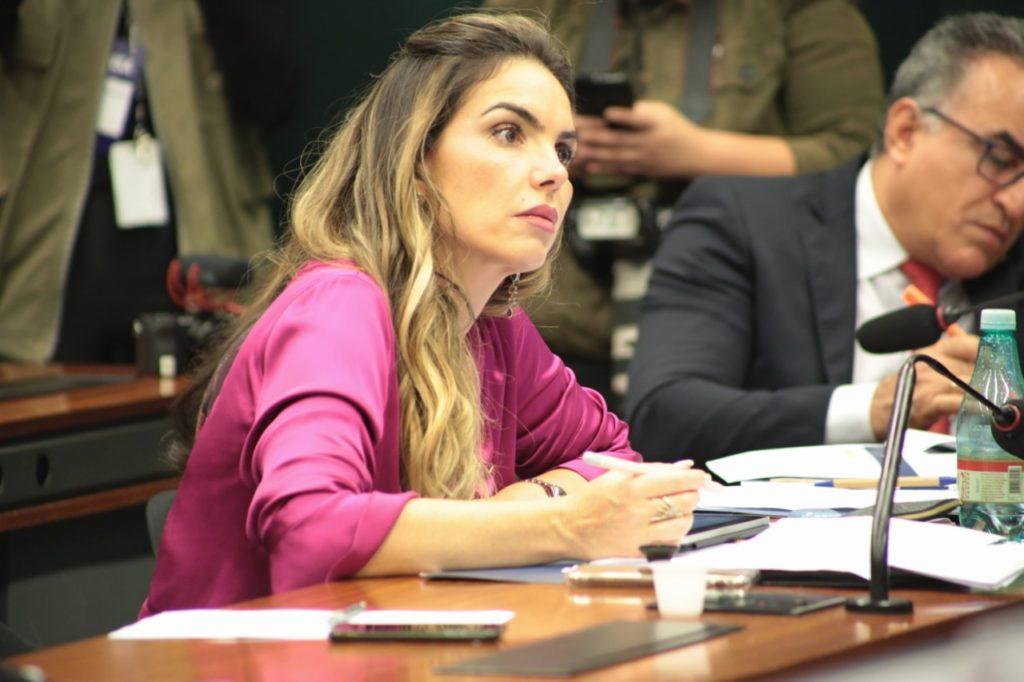 Paula Belmonte na audiência pública sobre as bolsas do CNPQ 1024x682 - Penas mais severas