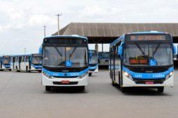 App de transporte para miniônibus