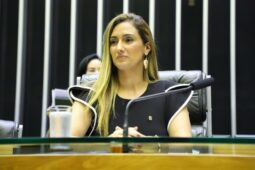 Read more about the article Disputa na Câmara Federal