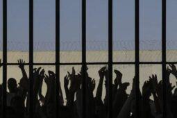 Read more about the article Testagem em presos