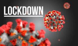 Mãozinha de Miranda: análise de lockdown é suspensa