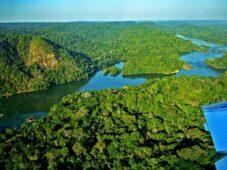 "Read more about the article ""Tire o olho da Amazônia"""