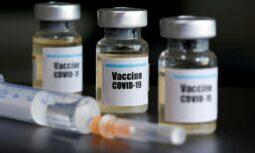 Vacinas enviadas pelo governo federal devem chegar amanhã