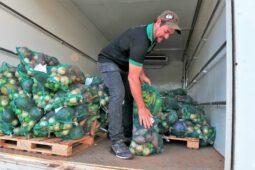 Read more about the article GDF anuncia 2 mi na compra de cestas verdes